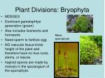 plant divisions bryophyta