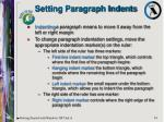 setting paragraph indents