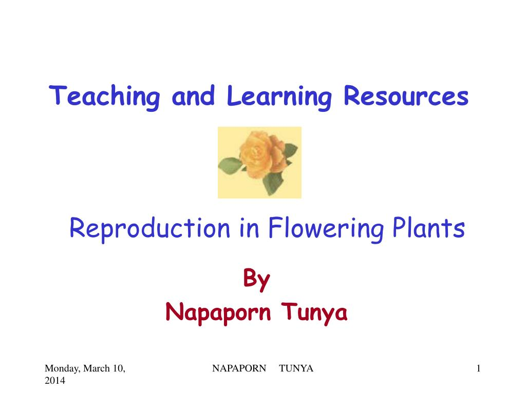 reproduction in flowering plants l.