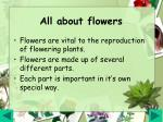 all about flowers4
