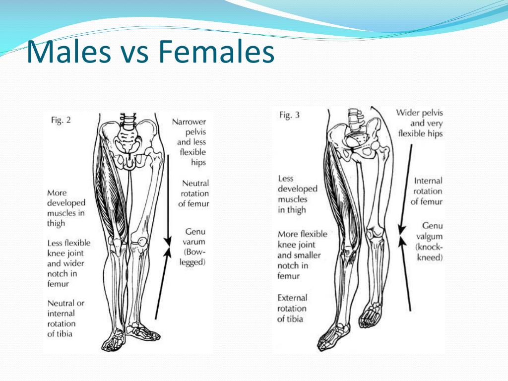 Males vs Females