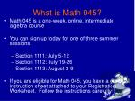 what is math 045