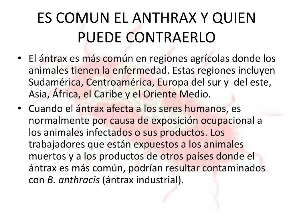ES COMUN EL ANTHRAX Y QUIEN PUEDE CONTRAERLO
