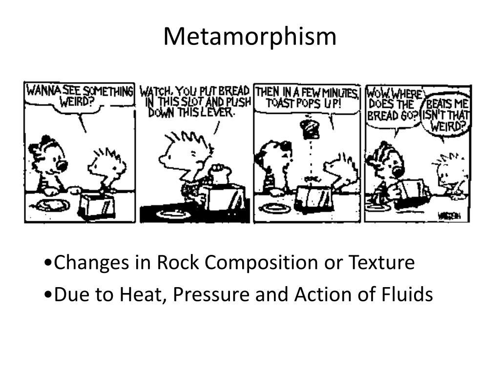 metamorphism l.