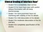 clinical grading of interface haze 1