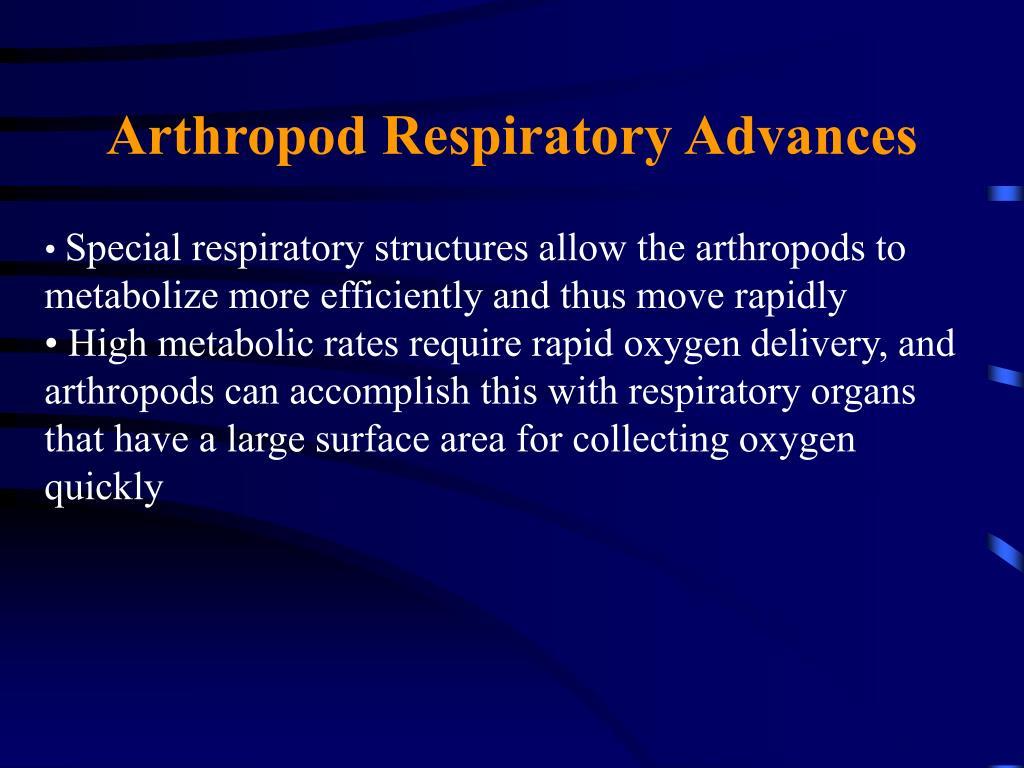 Arthropod Respiratory Advances