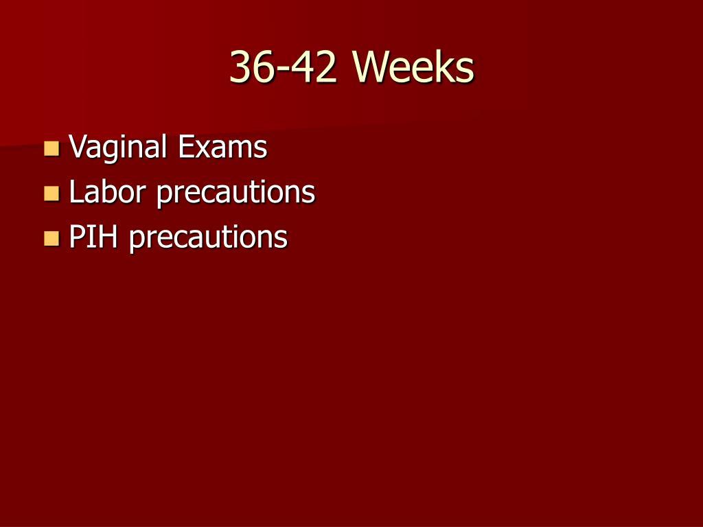 36-42 Weeks