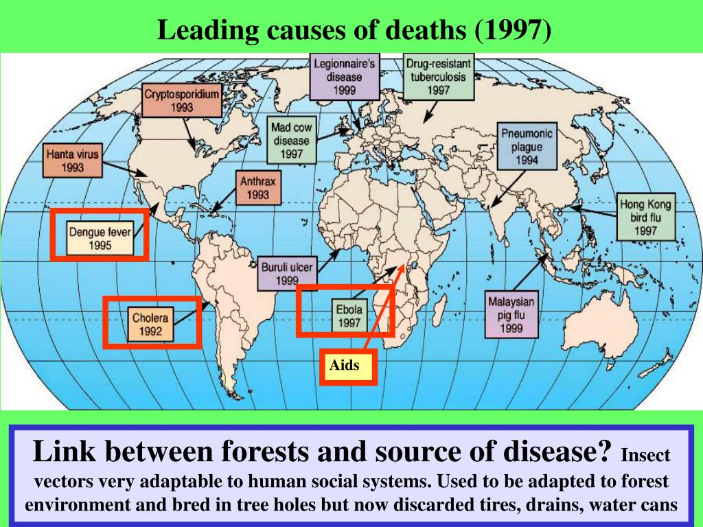 Leading causes of deaths (1997)