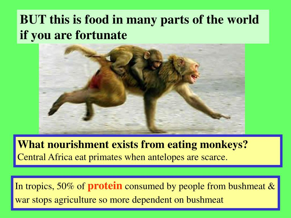 BUT this is food in many parts of the world if you are fortunate