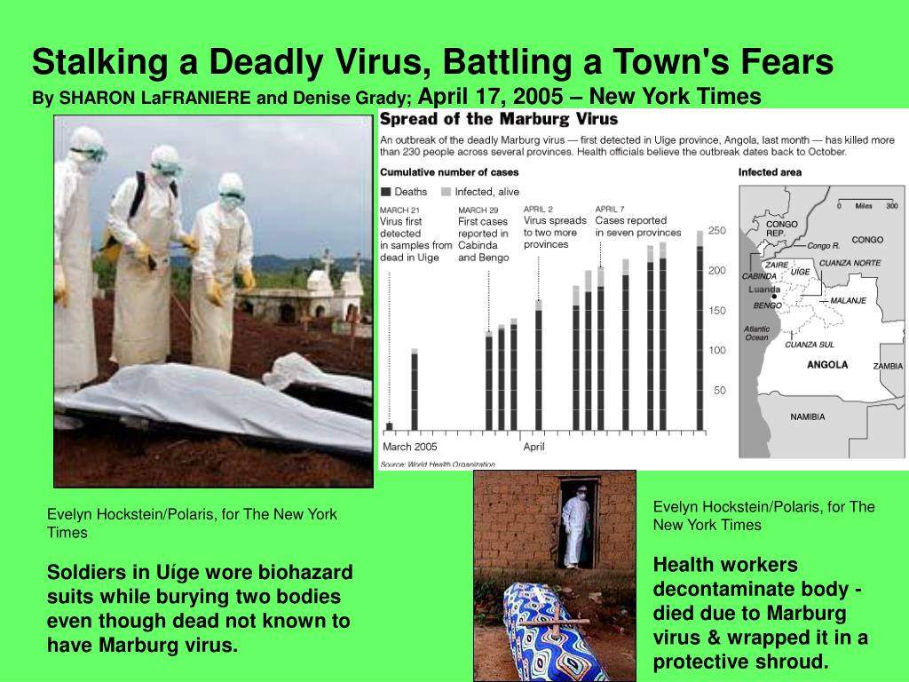 Stalking a Deadly Virus, Battling a Town's Fears