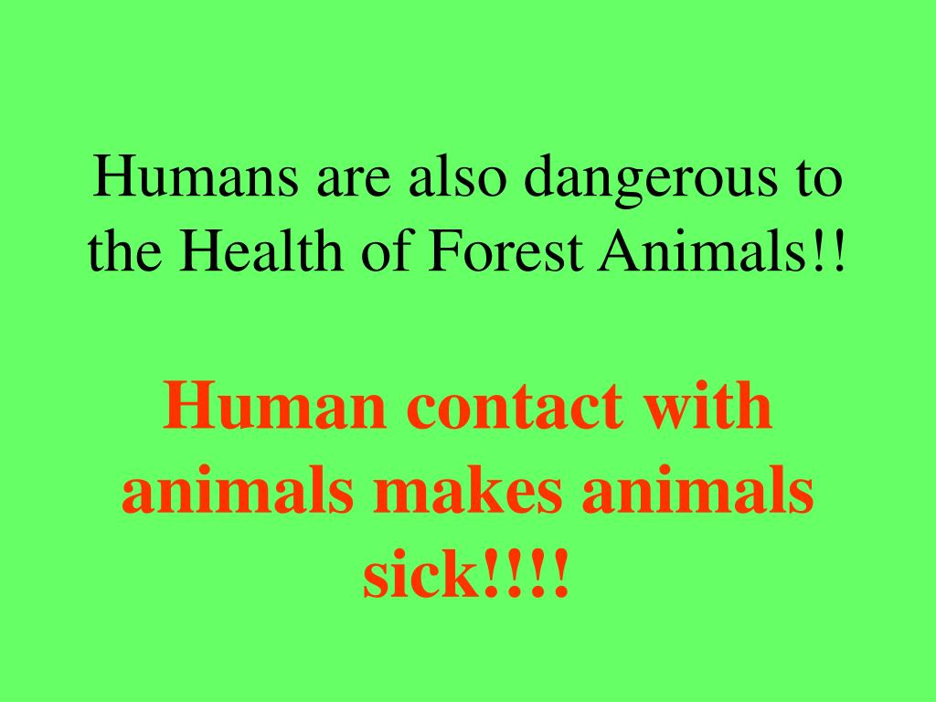 Humans are also dangerous to the Health of Forest Animals!!