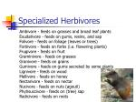 specialized herbivores