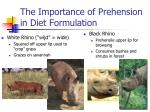 the importance of prehension in diet formulation