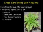 crops sensitive to low alkalinity