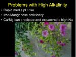 problems with high alkalinity