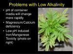 problems with low alkalinity