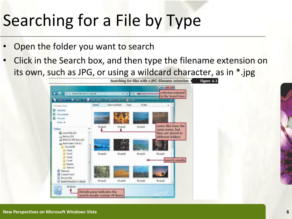 Searching for a File by Type