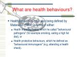 what are health behaviours3