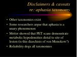 disclaimers caveats re aphasia taxonomy28