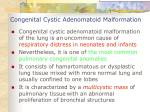 congenital cystic adenomatoid malformation
