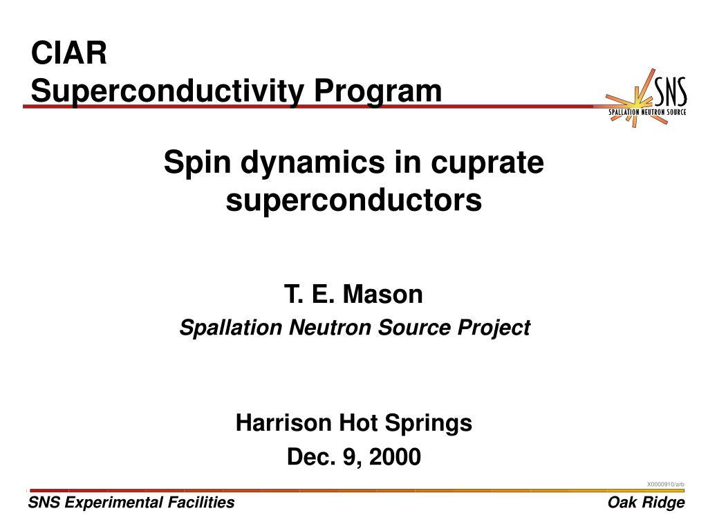spin dynamics in cuprate superconductors