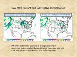 nam wrf instant and convective precipitation