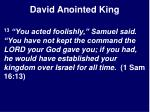 david anointed king