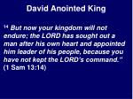 david anointed king3