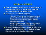 mitral annulus