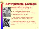 environmental damages