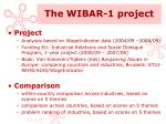 the wibar 1 project