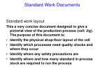 standard work documents29