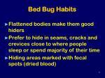 bed bug habits
