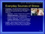 everyday sources of stress13