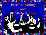 peer counseling and self help groups