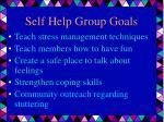 self help group goals34