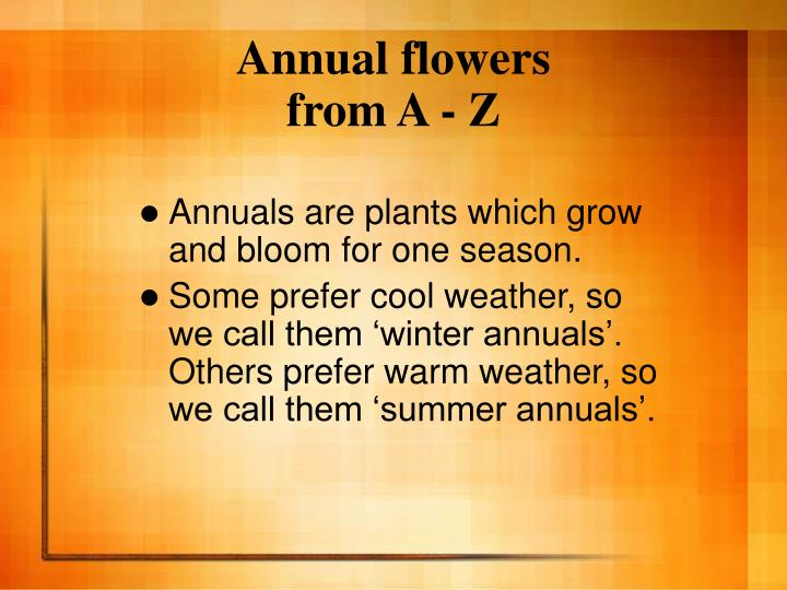 Annual flowers from a z