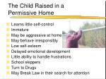 the child raised in a permissive home