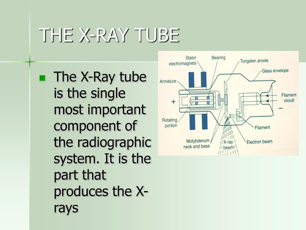 THE X-RAY