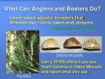 what can anglers and boaters do18