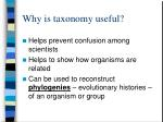 why is taxonomy useful