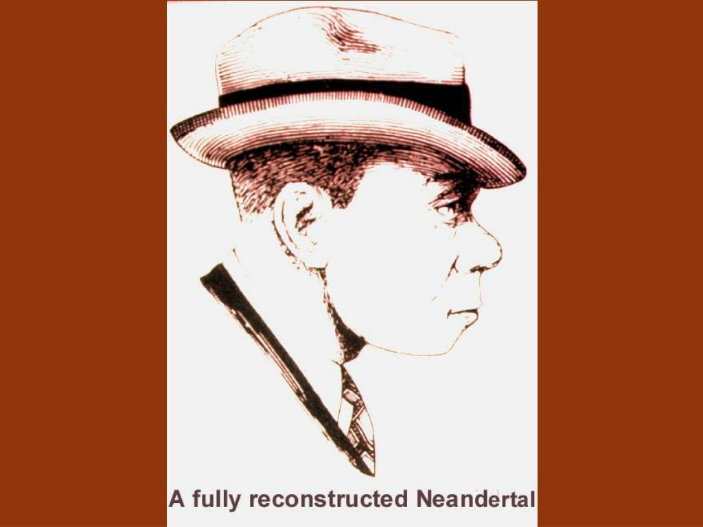 Full Neandertal