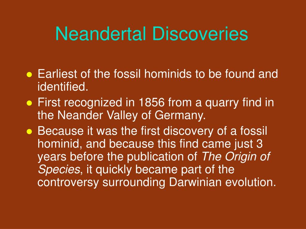 Neandertal Discoveries