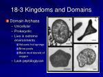 18 3 kingdoms and domains18