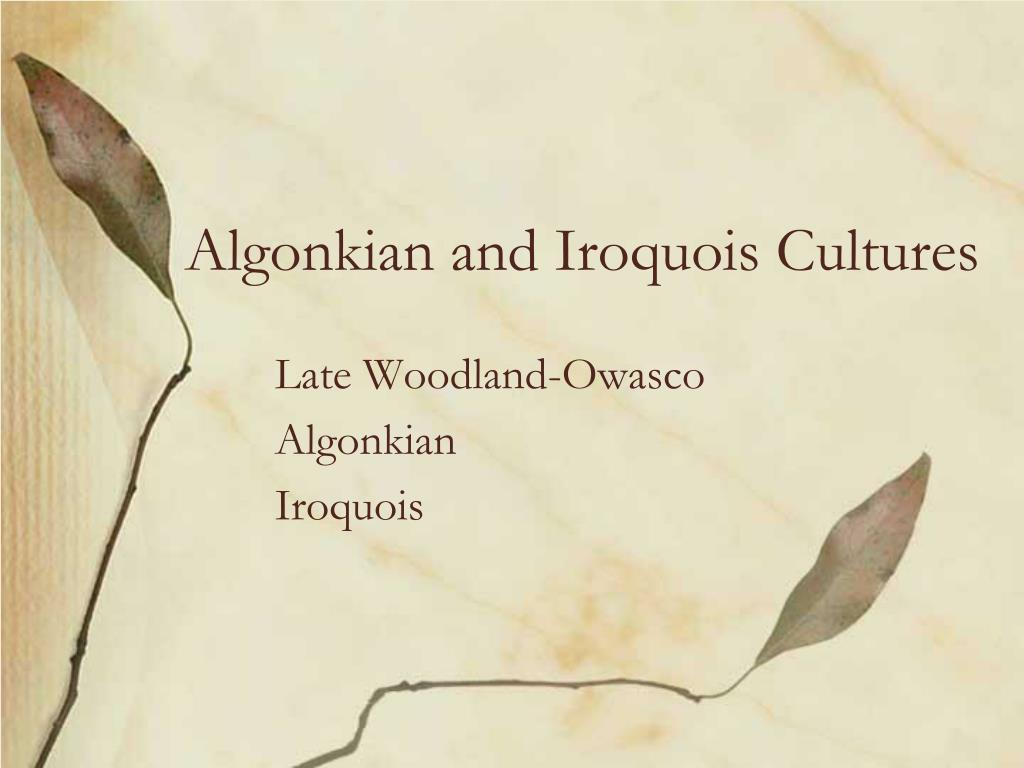 algonkian and iroquois cultures l.