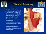 clinical anatomy37