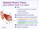skeletal muscle tissue each skeletal muscle is an organ