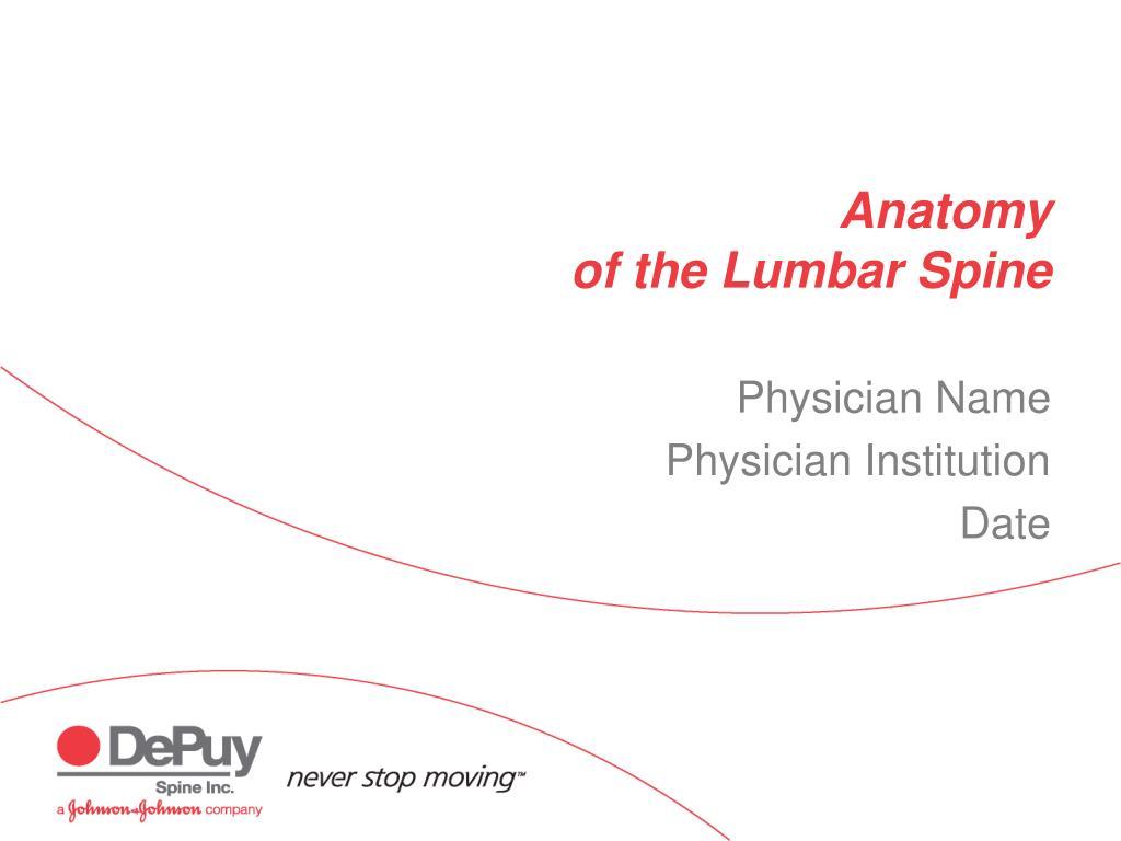 anatomy of the lumbar spine l.