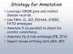 strategy for annotation