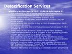 detoxification services21